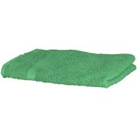 Indretning Håndklæde og badehandske Towel City RW1576 Bright Green