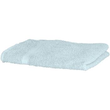 Indretning Håndklæde og badehandske Towel City RW1577 Peppermint