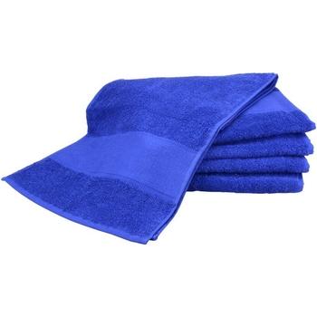 Indretning Håndklæde og badehandske A&r Towels Taille unique True Blue