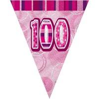 Indretning Klistermærker Unique Party 274 cm Pink
