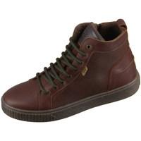 Sko Børn Høje sneakers Bisgaard 618062201322 Brun