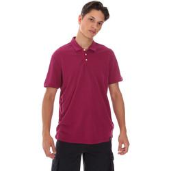 textil Herre Polo-t-shirts m. korte ærmer Museum MS21BEUPC06MO936 Violet