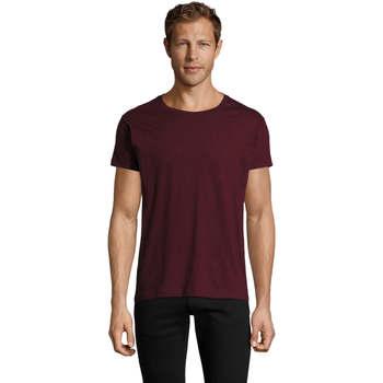 textil Herre T-shirts m. korte ærmer Sols REGENT FIT CAMISETA MANGA CORTA Burdeo