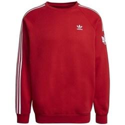 textil Herre Sweatshirts adidas Originals 3D TF 3 Strp CR Rød