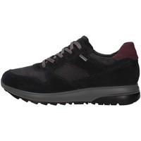 Sko Herre Lave sneakers IgI&CO 8132600 BLUE