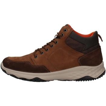 Sko Herre Høje sneakers IgI&CO 8119322 BROWN