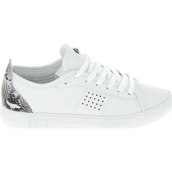 Sko Lave sneakers TBS Pandorra Blanc Hvid