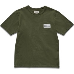 textil Herre T-shirts m. korte ærmer Halo T-shirt vert