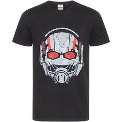 textil Herre T-shirts m. korte ærmer Marvel  Black
