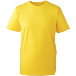 textil Herre T-shirts m. korte ærmer Anthem AM010 Yellow