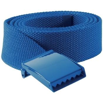 Accessories Bælter K-Up KP802 Royal Blue