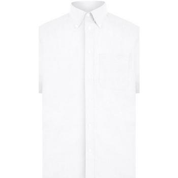 textil Herre Skjorter m. korte ærmer Absolute Apparel  White