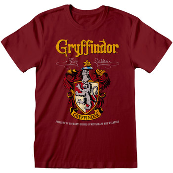 textil T-shirts & poloer Harry Potter  Maroon