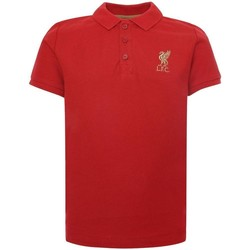textil Børn Polo-t-shirts m. korte ærmer Liverpool Fc  Red