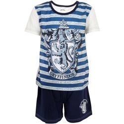 textil Dreng Pyjamas / Natskjorte Harry Potter  Blue/White