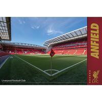 Indretning Skilte og plakater Liverpool Fc TA5853 Multicoloured