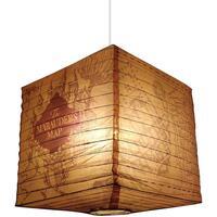 Indretning Lampeskærme og lampestandere Harry Potter TA7755 Brown