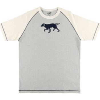 textil Herre Pyjamas / Natskjorte Lazyone  Blue/White