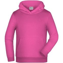 textil Børn Sweatshirts James And Nicholson  Pink