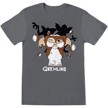 textil Herre T-shirts m. korte ærmer Gremlins  Charcoal Grey