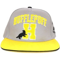 Accessories Kasketter Harry Potter  Grey/Yellow