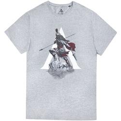 textil Herre T-shirts m. korte ærmer Assassins Creed Odyssey  Grey