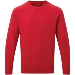 textil Herre Sweatshirts Asquith & Fox AQ078 Cherry Red