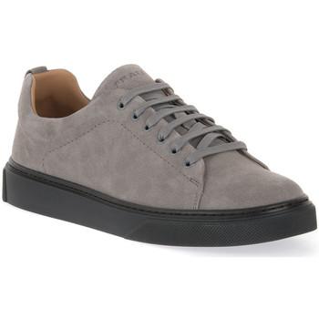 Sko Herre Lave sneakers Frau WAXY IRON Grigio