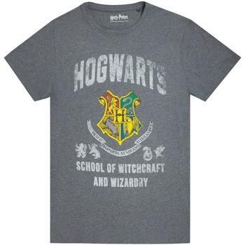 textil Herre T-shirts m. korte ærmer Harry Potter  Charcoal