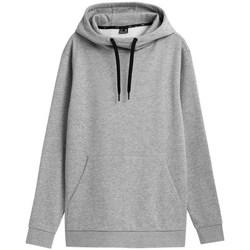 textil Herre Sweatshirts 4F BLM352 Grå