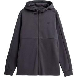 textil Herre Sweatshirts 4F BLM010 Grafit