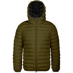 textil Herre Dynejakker Invicta 4431806/U Grøn
