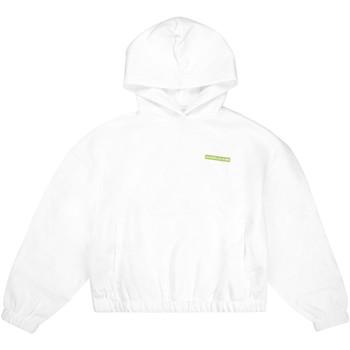 textil Dame Sweatshirts Calvin Klein Jeans J20J217292 hvid