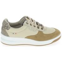 Sko Dame Lave sneakers TBS Bettyli Beige Fonce Beige