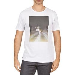 textil Herre T-shirts m. korte ærmer Kulte BALTHAZAR PLEIN PHARE 101931 BLANC Hvid