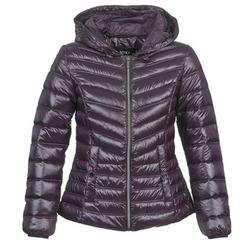 textil Dame Dynejakker Mexx MX3000550 AUBERGINE