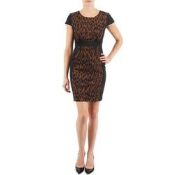 textil Dame Korte kjoler Manoukian EMMA Sort / Leopard