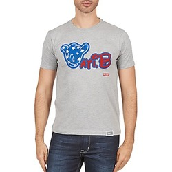 textil Herre T-shirts m. korte ærmer Wati B TSMIKUSA Grå