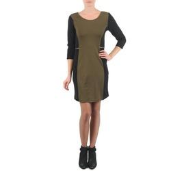 textil Dame Korte kjoler La City ROKAMIL KAKI / Sort