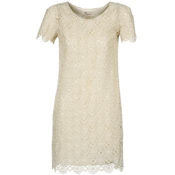 textil Dame Korte kjoler Stella Forest ARO051 BEIGE / GYLDEN