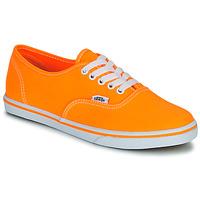 Sko Dame Lave sneakers Vans AUTHENTIC LO PRO Orange / Pop