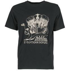 textil Herre T-shirts m. korte ærmer Dickies BRIDGEVILLE Sort