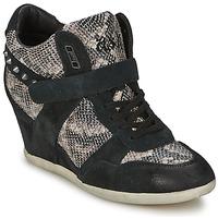 Sko Dame Høje sneakers Ash BISOU Sort / Pyton