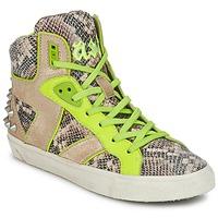 Sko Dame Høje sneakers Ash SONIC Pyton / Gul