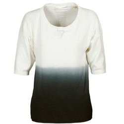 textil Dame Pullovere Chipie ALCAR Beige / Marineblå