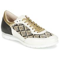 Sko Dame Lave sneakers Mjus FORCE Sort / Hvid / Gylden