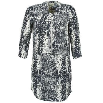 textil Dame Korte kjoler Stella Forest EDERI Marineblå / Hvid