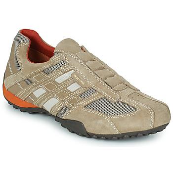 Sko Herre Lave sneakers Geox SNAKE Beige