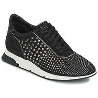 Sko Dame Lave sneakers Luciano Barachini SOHO Sort
