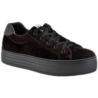 Sko Dame Lave sneakers F. Milano  Brun